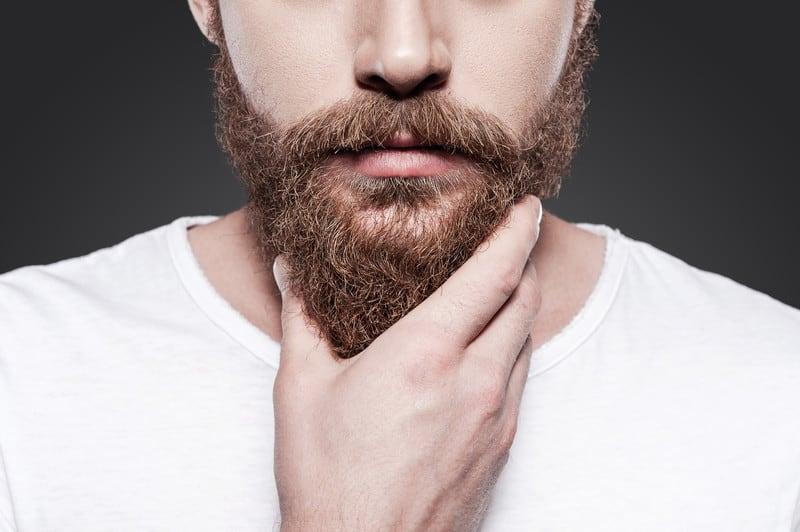Perfect Beard Transplant